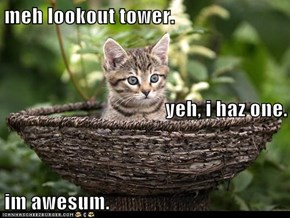 meh lookout tower. yeh, i haz one. im awesum.
