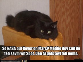 NASA gives Basement Cat an idea.