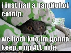 i just had a handful of catnip.  we both kno im gonna keep u up ALL nite.