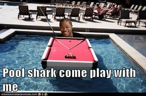 Pool shark come play with me