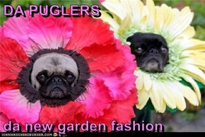 DA PUGLERS  da new garden fashion