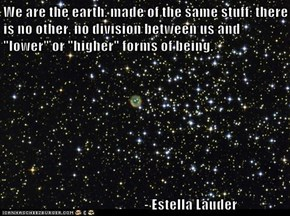 "We are the earth, made of the same stuff; there is no other, no division between us and ""lower"" or ""higher"" forms of being.                                    - Estella Lauder"