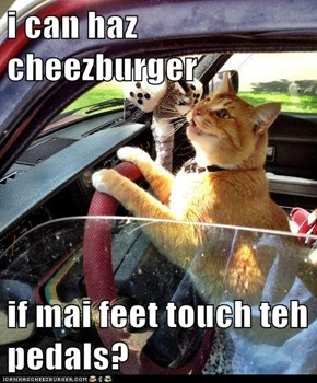 i can haz cheezburger  if mai feet touch teh pedals?