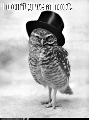 I don't give a hoot.