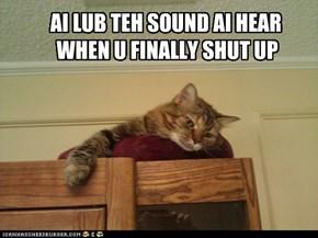 Teh sound ob silence