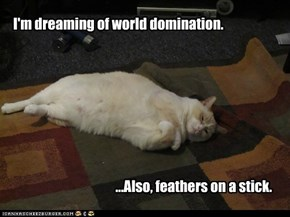 I'm dreaming of world domination.