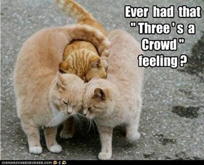 """Ever  had  that  """" Three ' s  a  Crowd """"  feeling ?"""