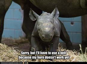 Sorry, but I'll have to use a bell  because my horn doesn't work yet