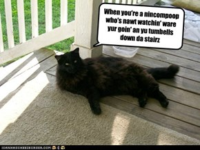 When is it bad luck to have a black cat cross your path?
