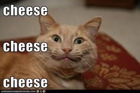 cheese cheese cheese