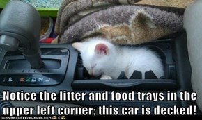 Notice the litter and food trays in the upper left corner; this car is decked!