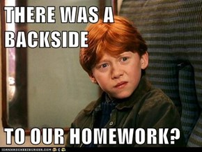 THERE WAS A BACKSIDE  TO OUR HOMEWORK?