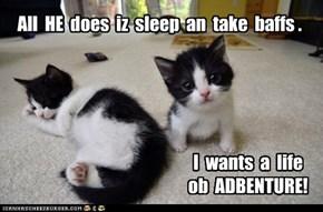 All  HE  does  iz  sleep  an  take  baffs .