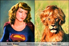 Super Woman Totally Looks Like Super Lion