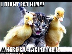I DIDNT EAT HIM!!!  WHERE R U TAKING ME!!!