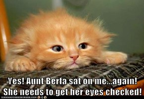 Yes! Aunt Berfa sat on me...again! She needs to get her eyes checked!