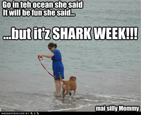but it'z SHARK WEEK!