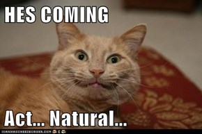 HES COMING  Act... Natural...
