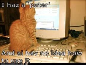 I haz a 'puter'  And ai hav no idea how to use it