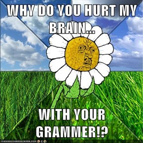 WHY DO YOU HURT MY BRAIN...  WITH YOUR GRAMMER!?