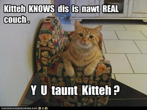 Kitteh  KNOWS  dis  is  nawt  REAL  couch .