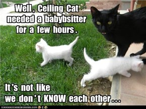 And babysitters are hard to find.