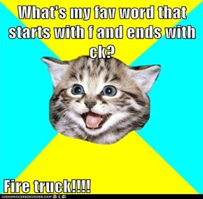 What's my fav word that starts with f and ends with ck?  Fire truck!!!!