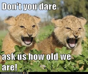 Don't you dare   ask us how old we are!