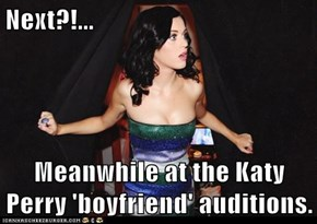 Next?!...  Meanwhile at the Katy Perry 'boyfriend' auditions.