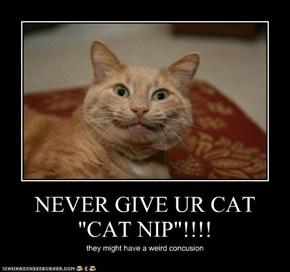 "NEVER GIVE UR CAT ""CAT NIP""!!!!"
