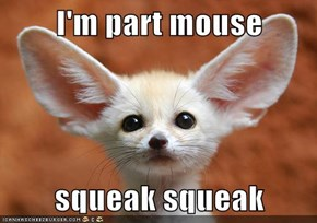 I'm part mouse  squeak squeak