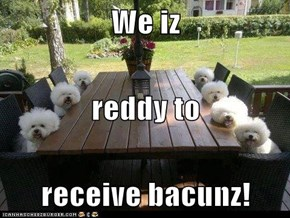We iz reddy to receive bacunz!