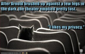"After Arnold brushed up against a few legs in the dark, the theater emptied pretty fast. ""I likes my privacy."""
