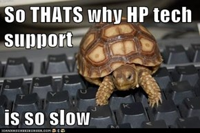 So THATS why HP tech support  is so slow