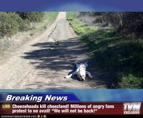 "Breaking News - Cheezeheads kill cheezland! Millions of angry fans protest to no avail! ""We will not be back!"""