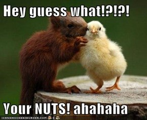 Hey guess what!?!?!  Your NUTS! ahahaha