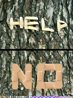 I'm Just a Tree