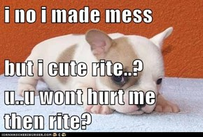 i no i made mess but i cute rite..? u..u wont hurt me then rite?