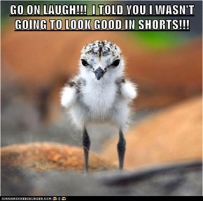 GO ON LAUGH!!!  I TOLD YOU I WASN'T GOING TO LOOK GOOD IN SHORTS!!!