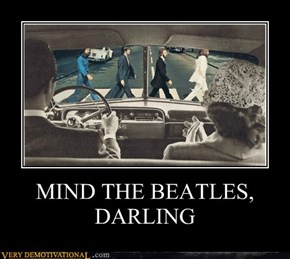 MIND THE BEATLES, DARLING