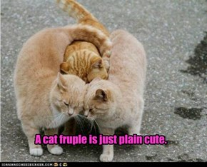A cat fruple is just plain cute.
