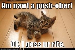 Am nawt a push-ober!  Ok, I gess ur rite.