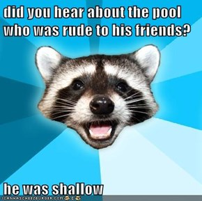 did you hear about the pool who was rude to his friends?  he was shallow