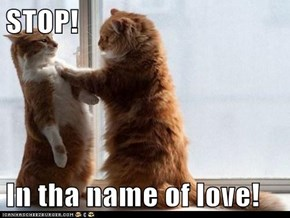 STOP!  In tha name of love!