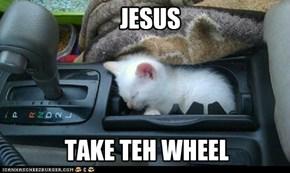 Scared Car Cat