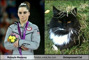 Mckayla Maroney Totally Looks Like Unimpressed Cat