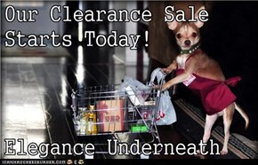Our Clearance Sale Starts Today!  Elegance Underneath