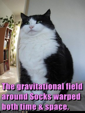 The gravitational field around Socks warped both time & space.