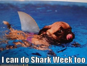 I can do Shark Week too