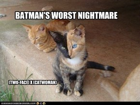 BATMAN;S WORST NIGHTMARE